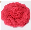 Women Warm Twist Knitted Hat Fashion Beanies Winter Cap